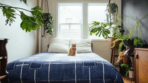 6 trükk, amit bevethetsz, ha a hálószobád alig nagyobb az ágyadnál