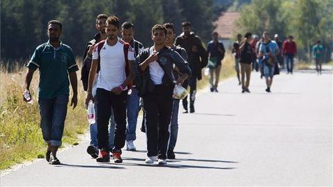 Orvosok Határok Nélkül: verik a menekülteket a magyar határnál