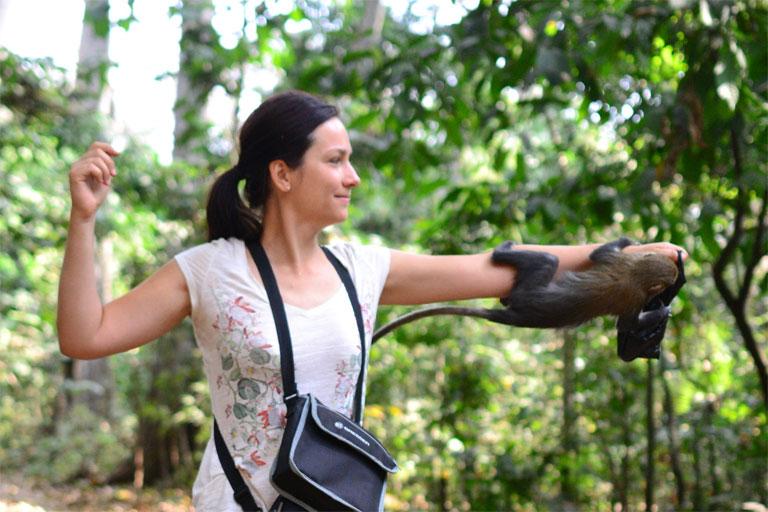 A ghánai Boabeng Fiema Monkey Sanctuary mona majmai megszokták az emberek közelségét (Fotó: http://zsuzsiestekergo.blog.hu/)