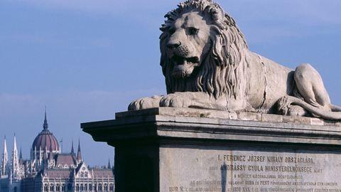 Omladoznak a Lánchíd oroszlánjai