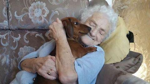 Tacskókölyök lett az idős, alzheimeres néni legjobb barátja