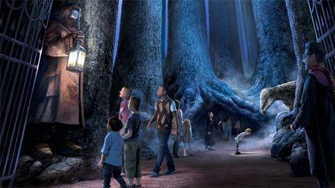 Bárkit szívesen fogad a Harry Potter-filmek titokzatos erdeje