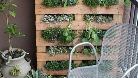 10 ötlet, hogyan csinálj kertet az erkélyedből