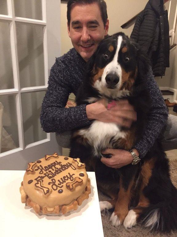 Ennél a kutyánál még senki nem várta jobban a szülinapi tortát - vicces fotó