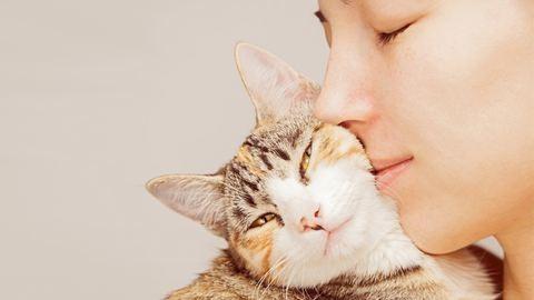Ezzel a cicaillatú parfümmel minden macskaimádót levehetsz a lábáról