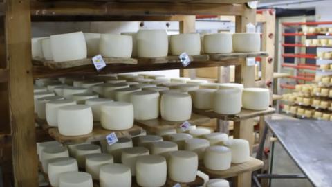 Változtatna a kormány a trappista sajt és a felvágottak árán