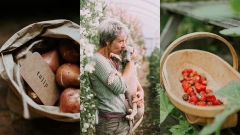 Varázslatos kertekbe visznek a magyar fotós képei
