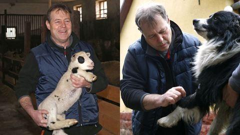 Egy vidéki állatorvos egy napja
