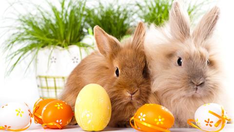 Húsvéti ajándék a nyugdíjasoknak? Itt a válasz!
