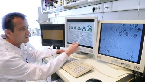 A világon egyedülálló sikert értek el a Debreceni Egyetem kutatói