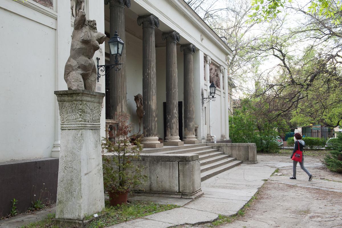 Majmok és őzek sétálgattak a hatodik kerületi kertben