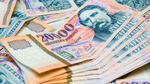 86 millió forint adót csaltak el a testvérek
