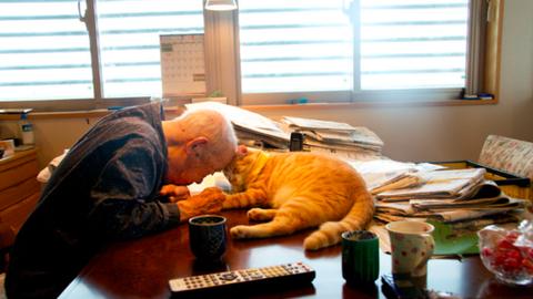 Teljesen felforgatta a beteg nagypapa életét a macska – megható fotók