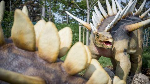 Nézegess képeket a veszprémi Jurassic Parkról!