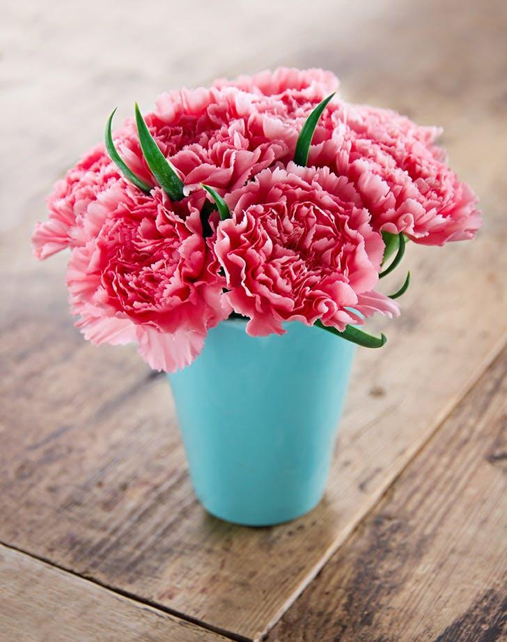 5 bolti virág, ami tovább eláll, mint gondolnád