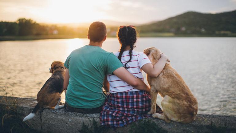 5 ok, amiért egy kutyatartóval kell járnod