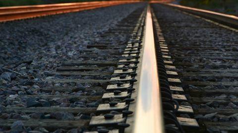 Lábát és farkát csonkolta a vonat, kritikus állapotban Ági