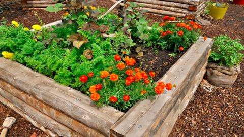 8 megoldás a kertbe, ami valóra váltja a kertészek álmait