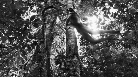 A fotós, aki a két kezével visszaültetett egy őserdőt