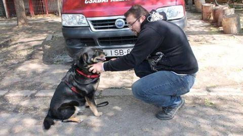 10 év után talált egymásra kutya és gazdája