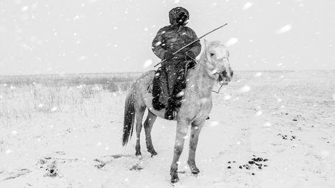 Elképesztő felvételek: a Sony fotópályázatának győztes képei