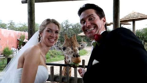 Esküvő az állatkertben: ennél vadabb ötletet!