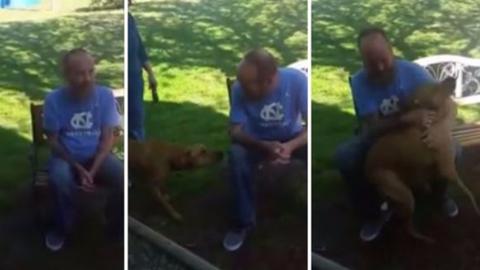 Lefogyott a gazdi, még a kutyája sem ismerte fel