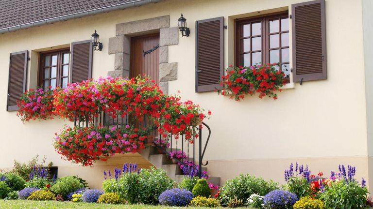Tippek nyári balkonládákhoz