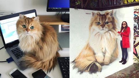 Hatalmas falfestményen kelti életre Smoothie-t, a macskát, a magyar graffitiművész