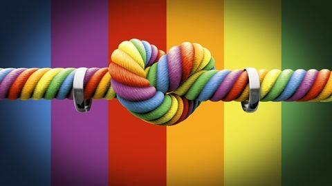 A magyar államnak is el kell ismernie a külföldön kötött melegházasságot