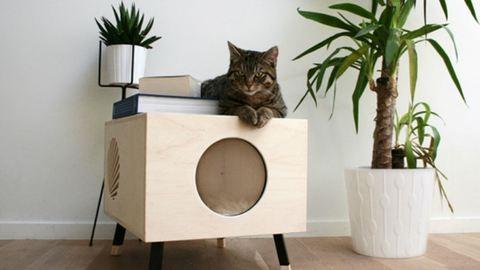 Cicaimádók figyelem: macskabútor modern formában