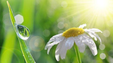 Még jövő héten sem lesz zavartalan tavaszi napsütés