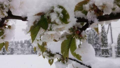 Ekkora hó esett május 9-én Litvániában