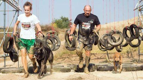 Hard Dog Race: Gyerekek is indulhatnak a hatlábú futóversenyen