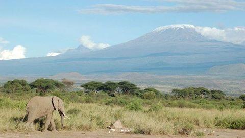 Krisztián tüdőátültetés után nekiindul a Kilimandzsárónak