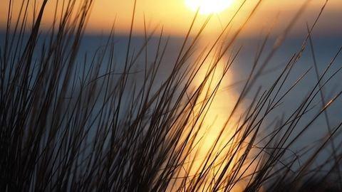 Ha szerencsénk van, a zivatarok alig zavarják meg a jó időt