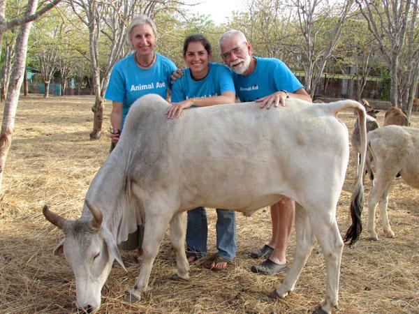 Kép forrása: Animal Aid Unlimited