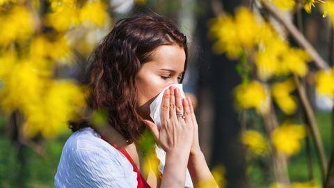 Ezek a legelterjedtebb allergiatípusok