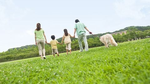 Tudtad, hogy ingyenes biztosítást köthetsz kullancsveszély ellen?