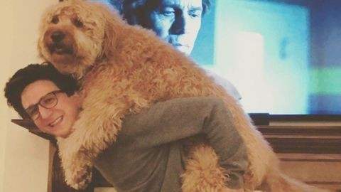 Az óriási kutya instagramját kötelező követned