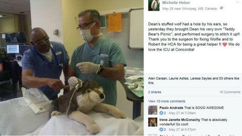Megoperálta nagybeteg páciense plüssállatát a sebész