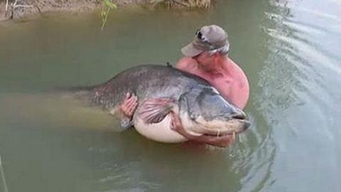 Kétméteres halszörnyet fogott a szentesi horgász