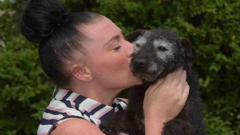 6 év után tért vissza családjához a kutya