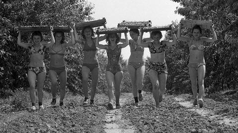 Ribizliszedés, KISZ-építőtábor, erdei iskola: nosztalgikus vakációk a múltból