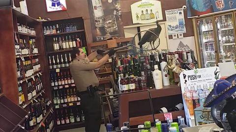 Páva zúzott az italboltban – videó