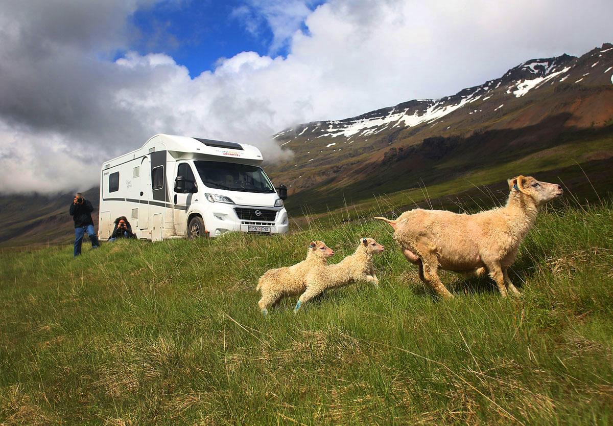 Izland nyáron igazi turista paradicsom - aminek a helyiek egyre kevésbé örülnek