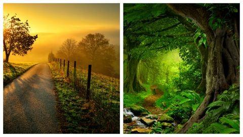 Válassz egy ösvényt, és megmondjuk, milyen út vár rád