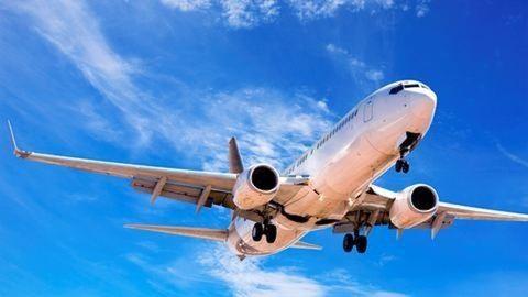 Madár csapódott egy repülőgépnek Ferihegyen