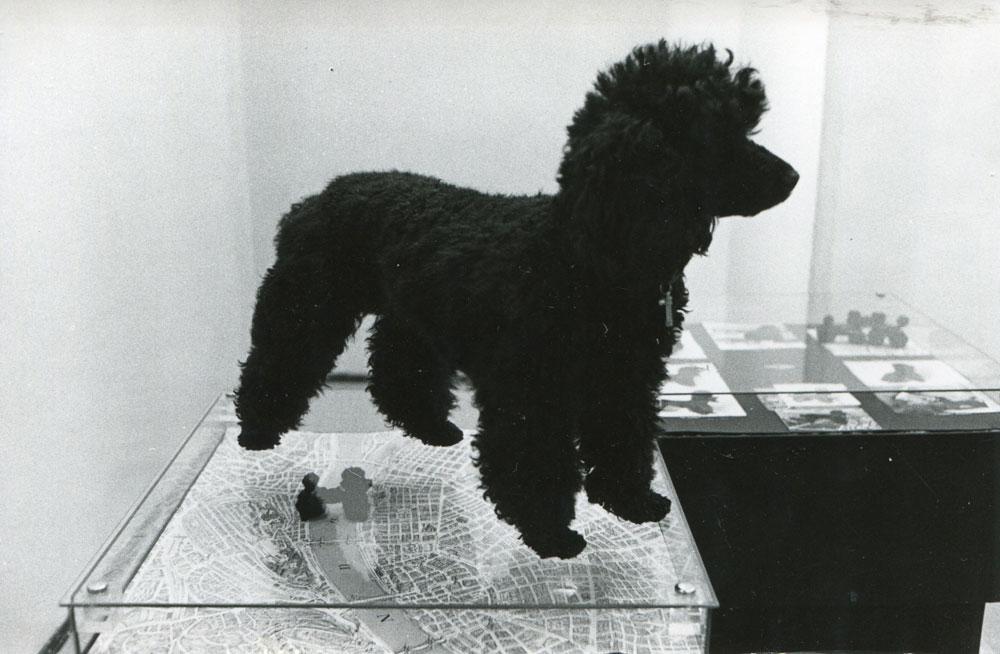 Tini kutya koncept-art műalkotásként (Fotó: Kemény György)
