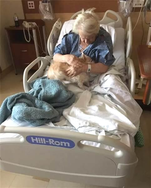 Kisbabának álcázva csempészte be a kórházba a nagyi kutyáját